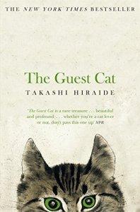 The gueste cat