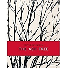 the-ash-tree